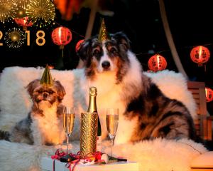 Китайский гороскоп 2018: Каким будет этот год для Вас?