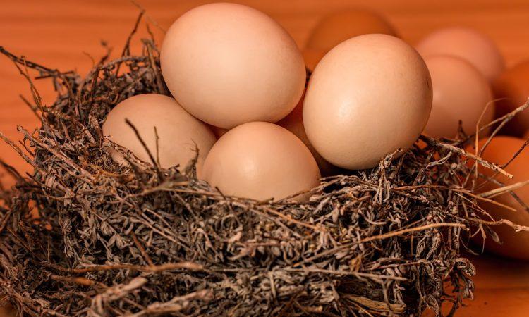 Рождественское гадание по яйцу