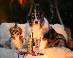 Гадание на Старый Новый год