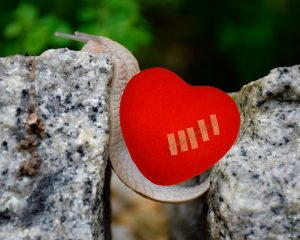 Препятствия в любви для знаков Зодиака