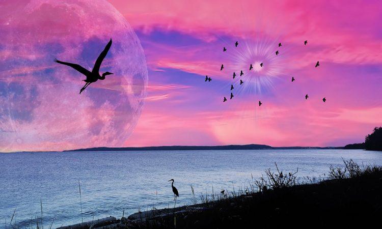 С полной Луной готовьтесь к новому изменению энергии